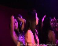 Hot Girls Clubbin - scene 6