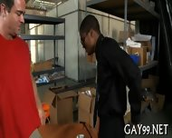 Hq Interracial Gay Action - scene 9