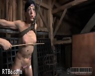 Ballerina Needs Wild Taming - scene 12