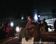 Lingerie Bull Riding - scene 4