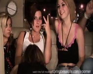 Limo Ride With Hot Chicks - scene 9