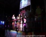 Club Hotties On Spring Break - scene 9