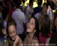 Club Hotties On Spring Break - scene 4