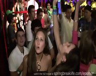 Club Hotties On Spring Break - scene 5