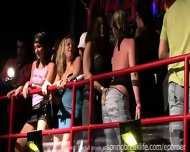 Night Club Flashers - scene 10