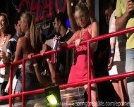 Night Club Flashers - scene 2