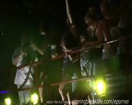 Night Club Flashers - scene 4