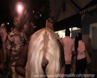 Fantasy Fest Key West - Short - scene 11