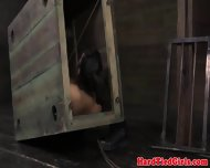 Masked Sub Held Captive In Gimp Box - scene 6