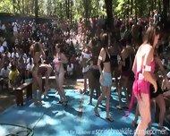 Wet Bikini Booty Shake - scene 2