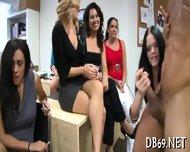 Sampling Stripper Studs Cocks - scene 2