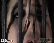 Intensive Punishment For Beauty - scene 5