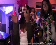 Mardi Gras Chicks - scene 6