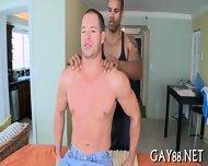 Sucking Dick And Fucking Ass - scene 7