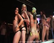 Bikini Booty Shake Contest - scene 2