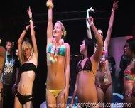 Bikini Booty Shake Contest - scene 3