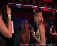 Spring Break Night Club Girls - scene 2