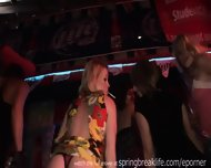 Spring Break Night Club Girls - scene 4