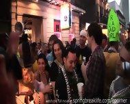Mardi Gras Daytime Flashers - scene 10