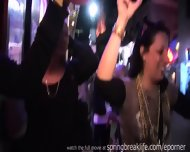Mardi Gras Flashers - scene 12