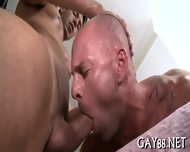 Fucking Tight Firm Asses - scene 7