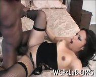 Unforgettable Black Sex - scene 9