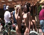 Naked Butt Shots - scene 4