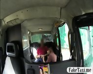 Bushy Chick Twat Drilled By Fraud Driver In The Backseat - scene 2