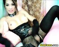 Asian Shemale Webcam Tube - scene 2