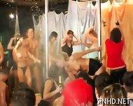 Loads Of Cock Sucking Pleasures - scene 2