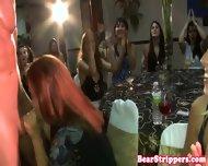 Fat Bachelorette Deepthroater Sucks Stripper - scene 11