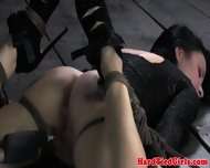 Frogtied To The Floor Beauty Gets Toyed - scene 5