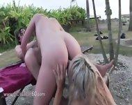Horny Beauties Sucking Dick In Car - scene 9