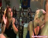Bachelorette Latina Dicksucking Stripper - scene 2