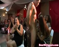 Bachelorette Latina Dicksucking Stripper - scene 4