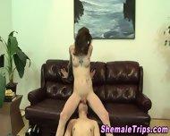 Shemale Gets Ass Eaten - scene 2
