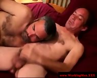 Hairy Bear Sucks In Want Of That Cumshot - scene 5