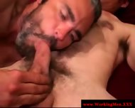 Hairy Bear Sucks In Want Of That Cumshot - scene 7