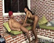 Busty Tranny Babe Gets Wild - scene 1