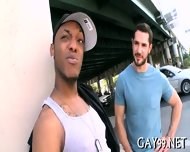 Black Gay Fucks White Pal - scene 10