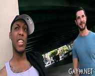 Black Gay Fucks White Pal - scene 5