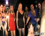 Exclusive Strippers Encounter - scene 1