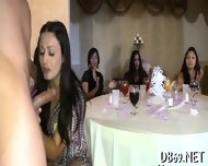 Naughty Blowjobs From Hot Chicks - scene 6