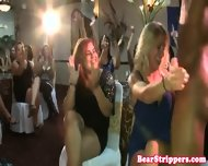 Bachelorette Cumswallowing Strippers Sperm - scene 12