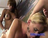 Hot Horny Trannies Shre Hard Throbbing Cock - scene 10