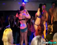 Party Skanks Get Naked - scene 2
