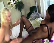 Black Tgirl Cock Rode - scene 2