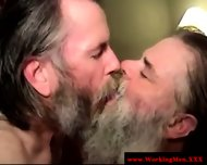 Bearded Straight Bear Dilf Facialized - scene 4