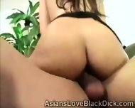 Gifted Brotha Makes Little Asia Suffer With His Massive Black Tool - scene 1