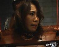 Gorgeous Babes Raucous Gangbang - scene 3